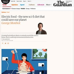 Electric food – the new sci-fi diet that could save our planet