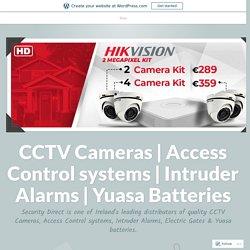 How Electric Gates Lend Strength, Beautify the Home – CCTV Cameras