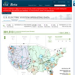 Electric System Operating Data