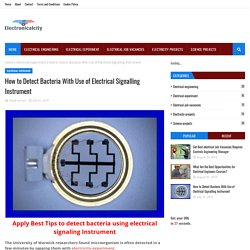 How to Detect Bacteria With Use of Electrical Signalling Instrument