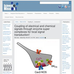 Coupling of electrical and chemical signals through enzyme super complexes for local signal transduction! – Science Mission