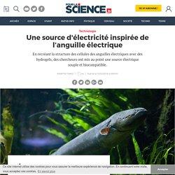 Une source d'électricité inspirée de l'anguille électrique