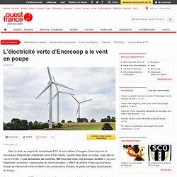 L'électricité verte d'Enercoop a le vent en poupe