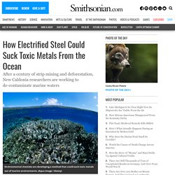 How Electrified Steel Could Suck Toxic Metals From the Ocean
