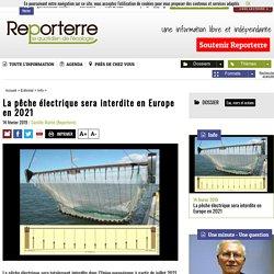 La pêche électrique sera interdite en Europe en 2021