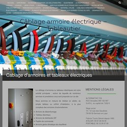 Cablage d'armoires et tableaux électriquesCâblage armoire électrique - Tableautier