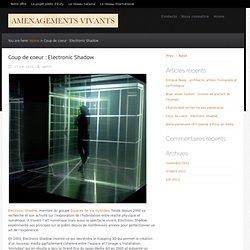 Coup de coeur : Electronic Shadow