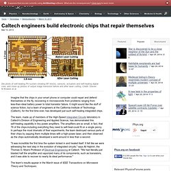 Caltech engineers build electronic chips that repair themselves