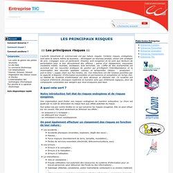 Entreprise TIC - Les principaux risques / La sécurité et la signature électronique / Comprendre / Menu Gauche / Ce site est destiné plus particulièrement aux entreprises qui désirent mener à bien leur projet d'intégration des TIC pour améliorer leur compé