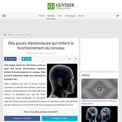 Des puces électroniques qui imitent le fonctionnement du cerveau