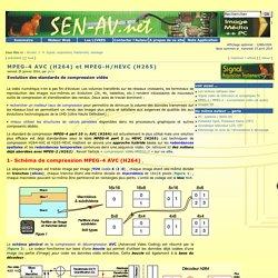 Systèmes Electroniques Numériques Audio Vidéo Multimédia - MPEG-4 AVC (H264) et MPEG-H/HEVC (H265)