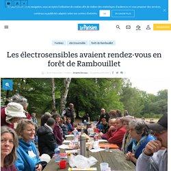 Les électrosensibles avaient rendez-vous en forêt de Rambouillet - 10/09/17