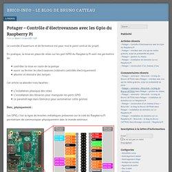 Potager – Contrôle d'électrovannes avec les Gpio du Raspberry Pi – Brico-Info – le blog de Bruno CATTEAU