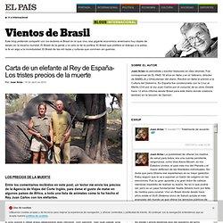Carta de un elefante al Rey de España >> Vientos de Brasil