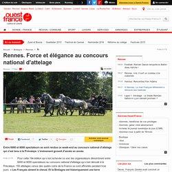 Rennes. Force et élégance au concours national d'attelage
