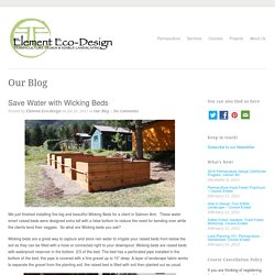Element Eco-Design Save Water with Wicking Beds - Element Eco-Design