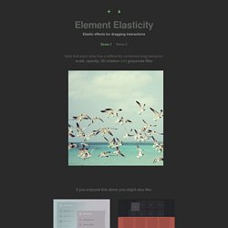 Element Elasticity - Demo 2