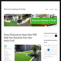Some Elementary Steps That Will Help You Maintain Your Synthetic Turf – Westcoast Landscape & Design