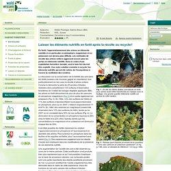 Laisser les éléments nutritifs en forêt