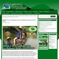Balade et baignade avec les éléphants dans la rivière Kwaï