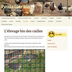 L'élevage bio des cailles