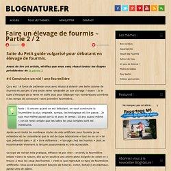 Faire un élevage de fourmis - Partie 2 / 2 - BlogNature.fr