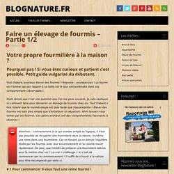 Faire un élevage de fourmis - Partie 1/2 - BlogNature.fr
