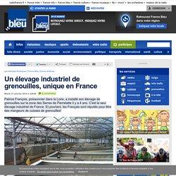 FRANCE BLEU 21/01/14 Un élevage industriel de grenouilles, unique en France