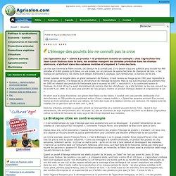 AFP 02/11/13 Dans le Gers - L'élevage des poulets bio ne connaît pas la crise