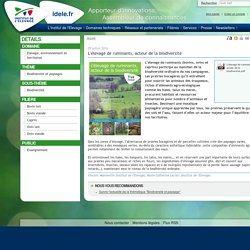 INSTITUT DE L ELEVAGE 05/07/16 L'élevage de ruminants, acteur de la biodiversité