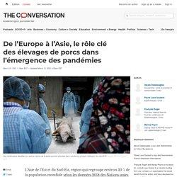 De l'Europe à l'Asie, lerôle clé desélevages de porcs dans l'émergence despandémies