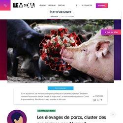 30 mars 2021 Les élevages de porcs, cluster des prochaines pandémies ?