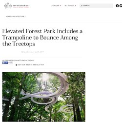 Elevated Sky Park Lets You Walk and Bounce Among Tree Tops