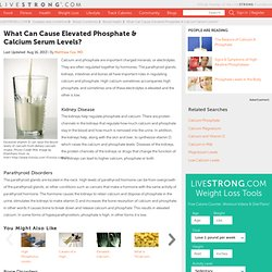 Reasons For High Calcium In The Human Body