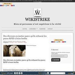 WIKISTRIKE 20/05/14 Des éleveurs en justice parce qu'ils refusent les puces RFID à leurs brebis