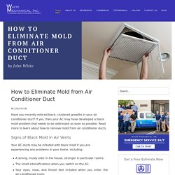 How to Eliminate Mold from Air Conditioner Duct