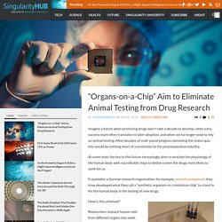"""""""Organs-on-a-Chip"""" Aim to Eliminate Animal Testing from Drug Research"""