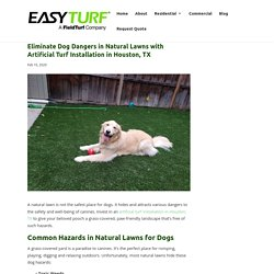 Dog Dangers Eliminated by Artificial Turf Installation in Houston, TX