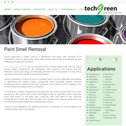 Paint Odor Removal - Techgreensolution