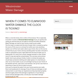When It Comes To Elmwood Water Damage the Clock Is Ticking!