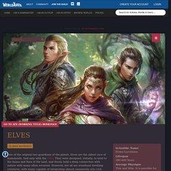 Elves Species in Ayn (Working Title)