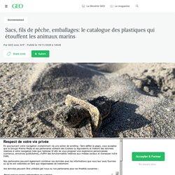 19 nov. 2020 Sacs, fils de pêche, emballages: le catalogue des plastiques qui étouffent les animaux marins