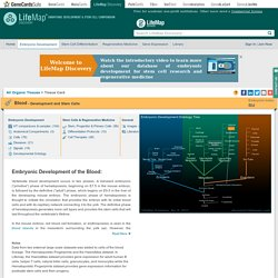 Blood - Embryonic Development & Stem Cells - LifeMap Discovery