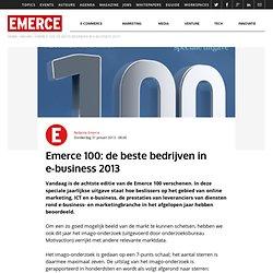100: de beste bedrijven in e-business 2013