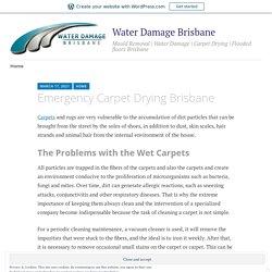 Emergency Carpet Drying Brisbane – Water Damage Brisbane