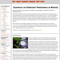 Emergent Phenomena in Nature