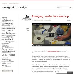 Video: Emerging Leader Labs Wrap-up