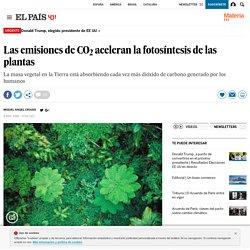 Las emisiones de CO 2 aceleran la fotosíntesis de las plantas