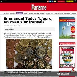 """Emmanuel Todd: """"L'euro, un veau d'or français"""""""