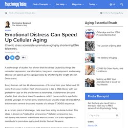 Emotional Distress Can Speed Up Cellular Aging